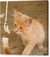 Play Time With Kitty Canvas Print