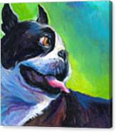 Playful Boston Terrier Canvas Print