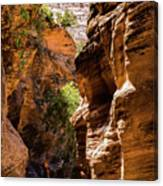 Playing The Slots In Zion Canvas Print