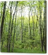Pleasure Of Pathless Woods - Nat Canvas Print