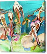 Plethora Of Pelicans Canvas Print