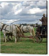 Plowing In Lancaster County Canvas Print