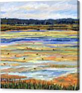Plum Island Salt Marsh Canvas Print