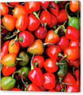Plump Red Peppers Photo Stock Canvas Print