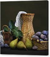 Plums And Pears Canvas Print
