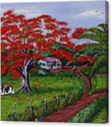 Poinciana Blvd Canvas Print