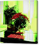 Poinsettia By Kef Canvas Print