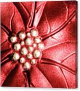 Poinsettia Abstract Canvas Print