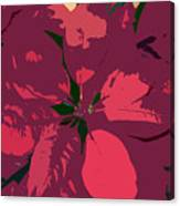 Poinsettias Work Number 4 Canvas Print