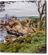 Point Lobos State Reserve Canvas Print