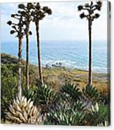 Point Loma Lighthouse Overlook Canvas Print