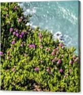 Point Reyes National Seashore Coast On Pacific Ocean Canvas Print