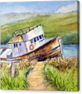 Point Reyes Relic Canvas Print