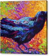 Poised - Crow Canvas Print