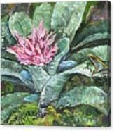 Poison Dart Frog On Bromeliad Canvas Print