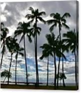 Poka'i Bay, Waianae, Hawaii  Canvas Print