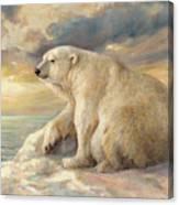 Polar Bear Rests On The Ice - Arctic Alaska Canvas Print