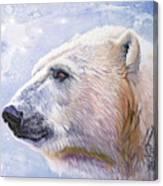 Polar Blue Canvas Print