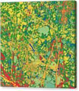 Pollack Green Canvas Print