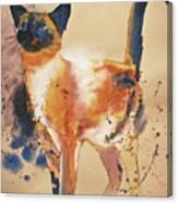 Pollock's Cat Canvas Print