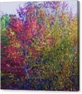 Polychromatic Canvas Print