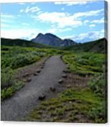 Polychrome Pass Trail, Denali Canvas Print