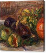 Pomegranate And Figs Canvas Print