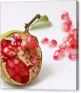 Pomegranate And Seeds  Canvas Print
