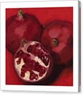 Pomegranite Trio Canvas Print
