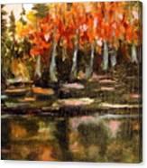 Pond 1 Canvas Print