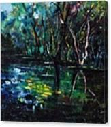 Pond 944 Canvas Print