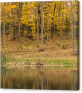 Pond And Woods Autumn 1 Canvas Print