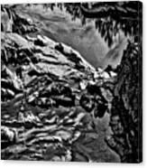 Pond At Great Falls #4 Canvas Print