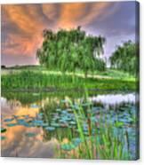Pond Dreams 4 Canvas Print