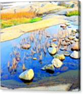 Do You Know The Secret Of The Pond Canvas Print