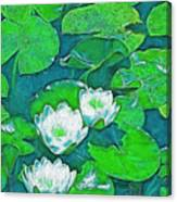 Pond Lily 2 Canvas Print