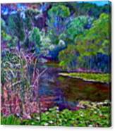 Pond Of Tranquility Canvas Print