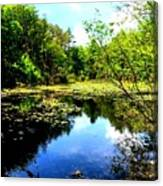Pond On The Delaware Gap Canvas Print