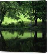 Pond Reflect Canvas Print