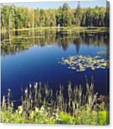 Pond To Ponder Canvas Print