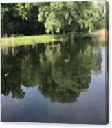 Pond With Ducks Canvas Print