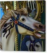 Pony Carrsouel Portrait Canvas Print