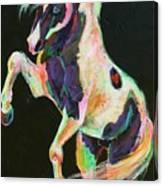 Pony Power II Canvas Print
