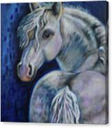 Pony Time Canvas Print