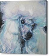 Poodle White Standard Canvas Print
