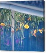 Pool Garden Canvas Print