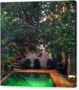 Pool With Tree Canvas Print