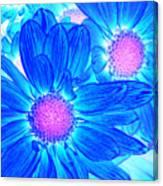 Pop Art Daisies 6 Canvas Print