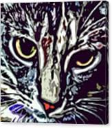 Face Of The Feline Canvas Print