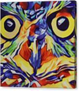 Pop Art Owl Face-1 Canvas Print